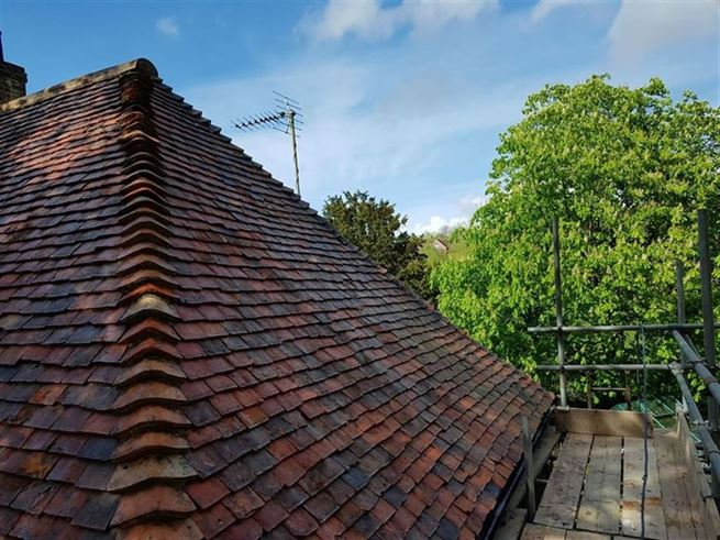 roof moss removal services ashford